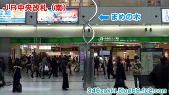 JR大宮駅構内 中央自由通路 まめの木