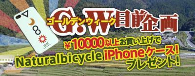 sale_convert_20120419163245.jpeg