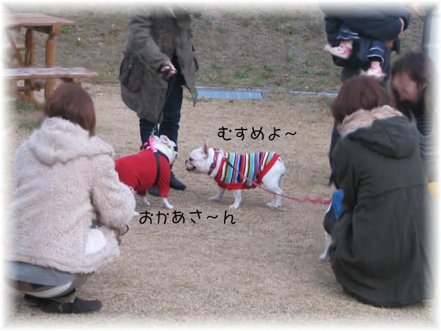 oyako4.jpg