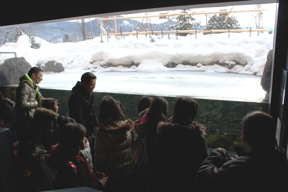 世界初!山の水族館の凍る水槽
