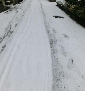 CIMG6218.雪道JPG