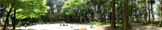 CIMG7069.森の憩い場JPG