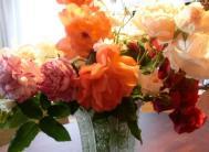 CIMG7501.花瓶に生けるJPG