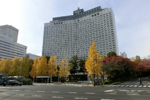 CIMG9534.品川駅近く銀杏JPG