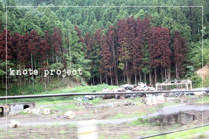 2011090102.jpg