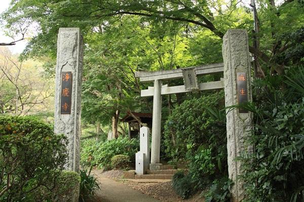 2011_09_30 浄慶寺 彼岸花DPP_0116