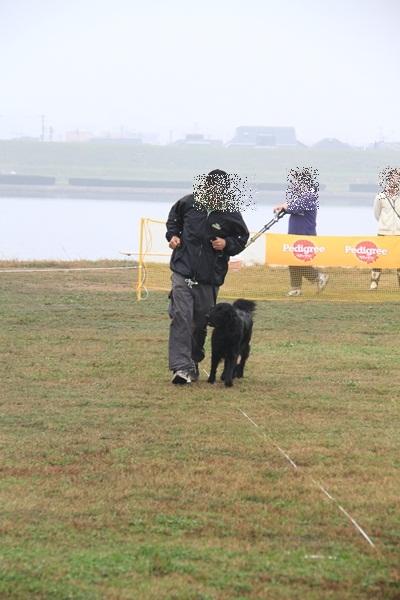 2011_11_06 訓練競技会DPP_0007