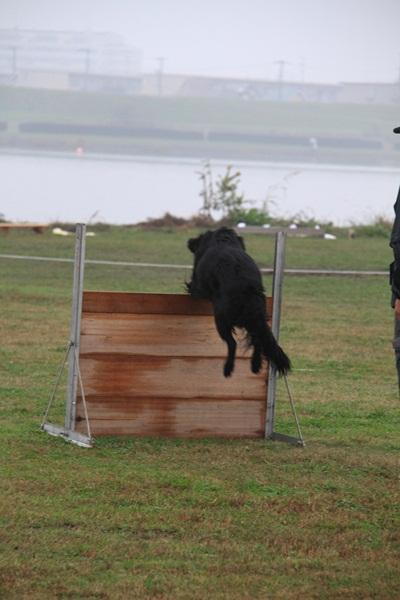 2011_11_06 訓練競技会DPP_0020