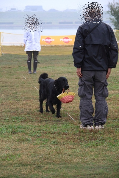 2011_11_06 訓練競技会DPP_0051