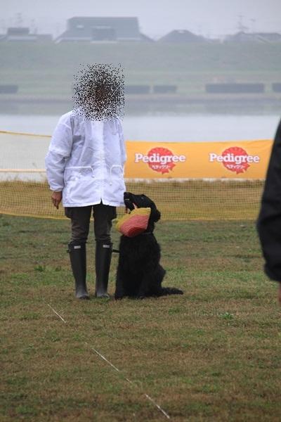 2011_11_06 訓練競技会DPP_0048