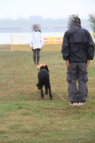 2011_11_06 訓練競技会DPP_0041