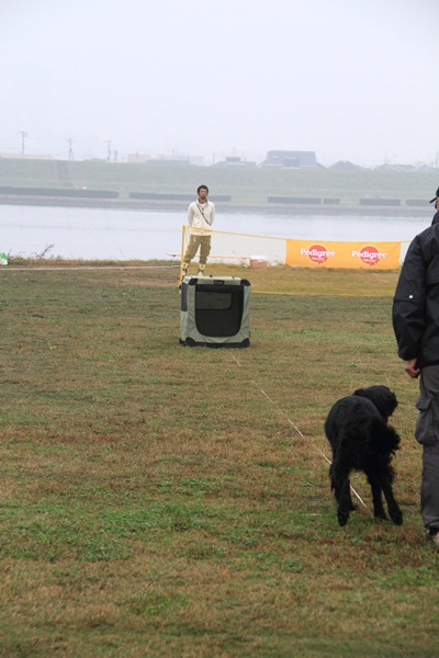 2011_11_06 訓練競技会DPP_0032