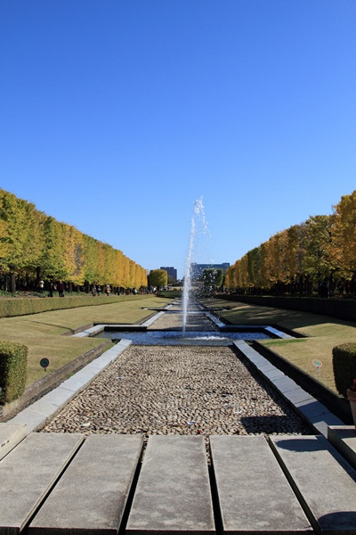 2011_11_16 昭和記念公園  ブログサイズ2011_11_16 昭和記念公園DPP_0053