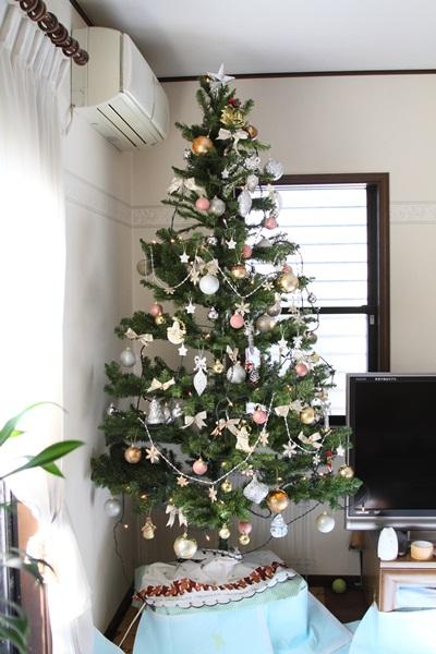 2011_11_25 クリスマスツリーDPP_0045