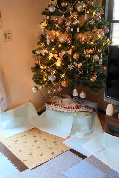 2011_11_25 クリスマスツリーDPP_0001