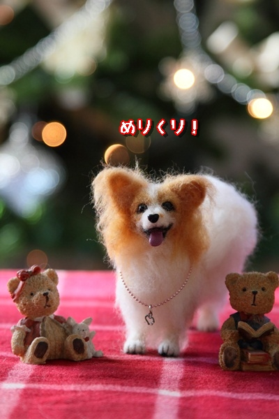 2011_11_25 クリスマスツリーDPP_0006