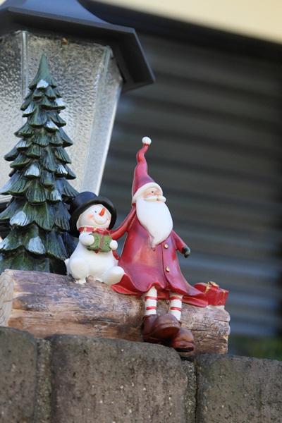 2011_11_25 クリスマスツリーDPP_0075