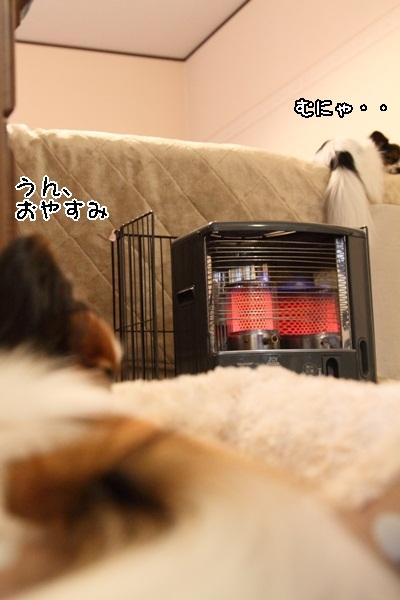 2011_12_01 石油ストーブDPP_0003