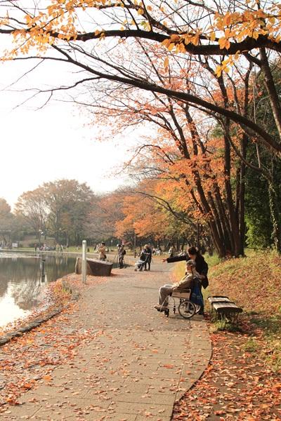 2011_11_30 せせらぎ公園DPP_0035