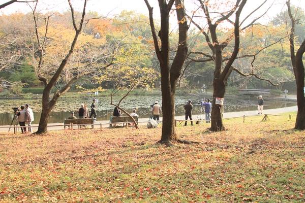 2011_11_30 せせらぎ公園DPP_0017