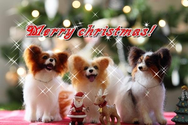2011_11_25 クリスマスツリーDPP_0008