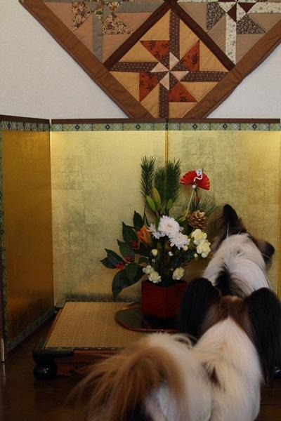 2011_12_31 お正月DPP_0018