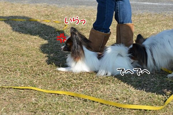 2012_01_04 ガス橋 ブログサイズDSC_2025