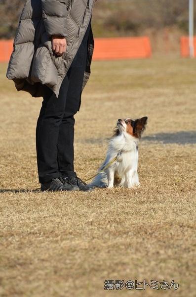 2012_01_06 宇奈根 ブログ用DSC_2071
