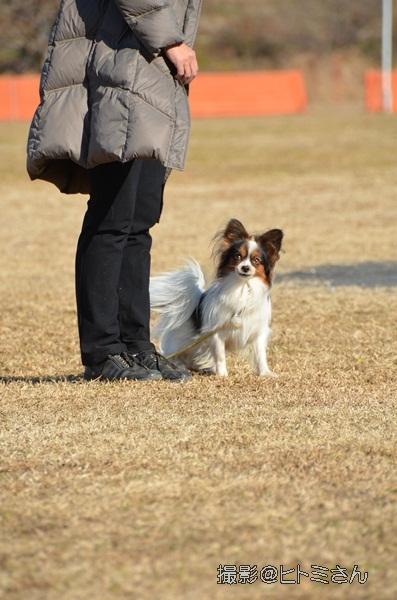 2012_01_06 宇奈根 ブログ用DSC_2070
