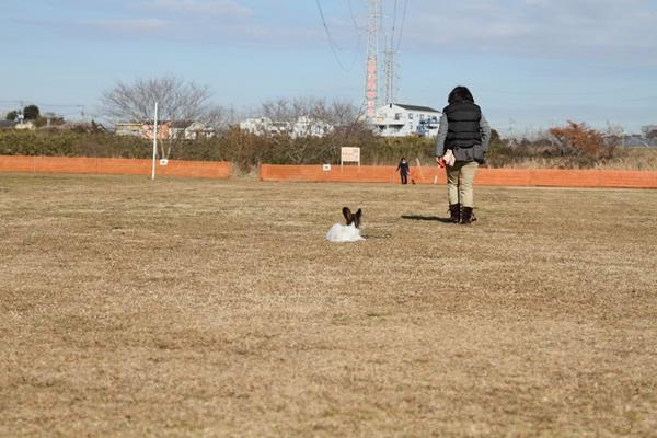 2012_01_06 宇奈根 ブログ用2012_01_06 宇奈根 アルバムDPP_0009