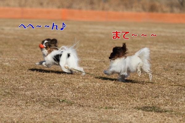 2012_01_06 宇奈根 ブログ用2012_01_06 宇奈根 アルバムDPP_0076