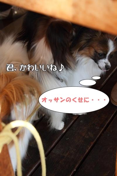 2012_01_06 宇奈根 ブログ用2012_01_06 宇奈根 アルバムDPP_0148