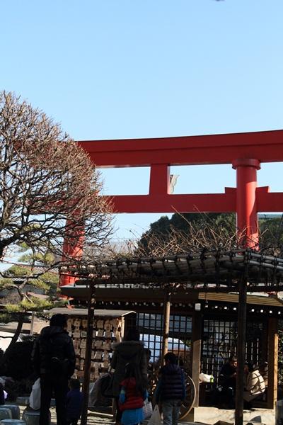 2012_01_09 琴平神社DPP_0006