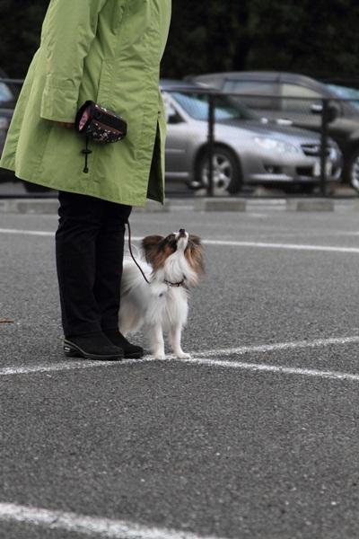 2012_02_05 タイクーンブログサイズ本牧 アルバムサイズ0010