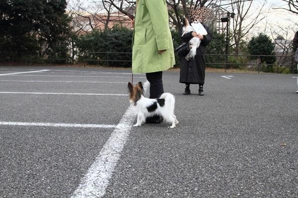 2012_02_05 タイクーンブログサイズ本牧 アルバムサイズ0012