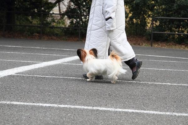 2012_02_05 タイクーンブログサイズ本牧 アルバムサイズ0029