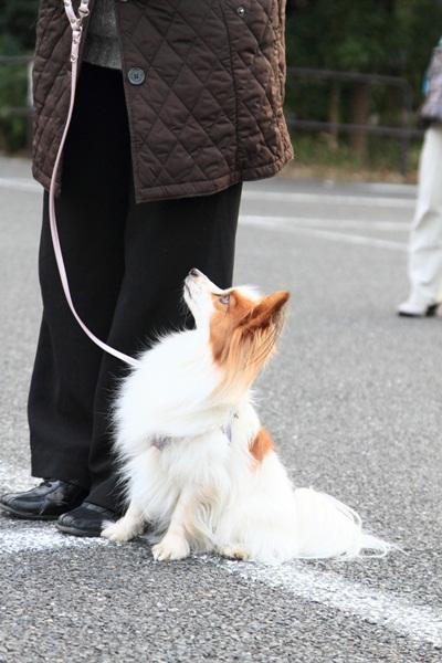 2012_02_05 タイクーンブログサイズ本牧 アルバムサイズ0018