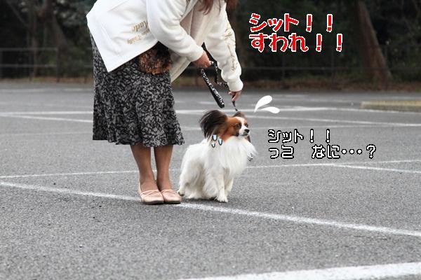 2012_02_05 タイクーンブログサイズ本牧 アルバムサイズ0054