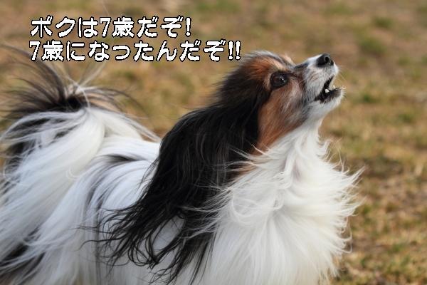 宇奈根ブログサイズ0127