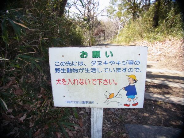 王禅寺ブログ0108