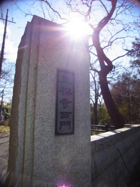 王禅寺ブログ0130