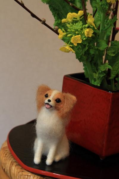 桃と菜の花ブログ0031