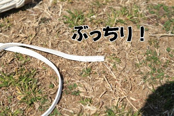 宇奈根 3月ブログ0036