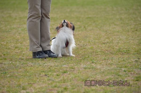 03_22 宇奈根 ヒトミサン0001