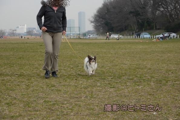 03_22 宇奈根 ヒトミサン0054