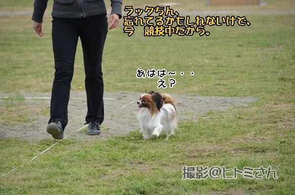 春季競技会 ヒトミさんDSC_4150