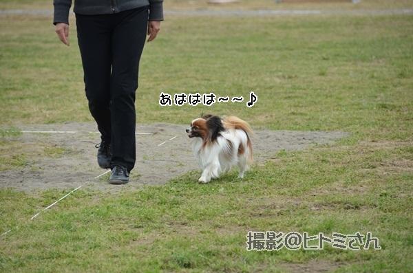 春季競技会 ヒトミさんDSC_4149