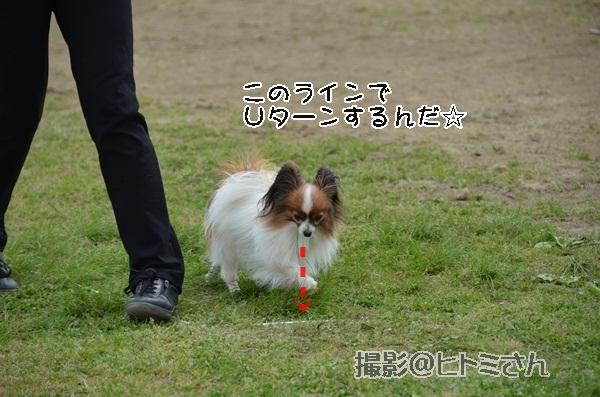 春季競技会 ヒトミさんDSC_4267