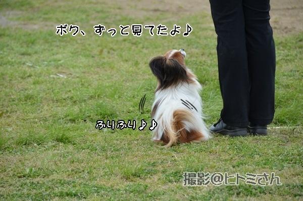 春季競技会 ヒトミさんDSC_4276