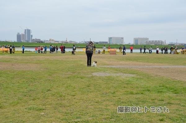 春季競技会 ヒトミさんDSC_4244